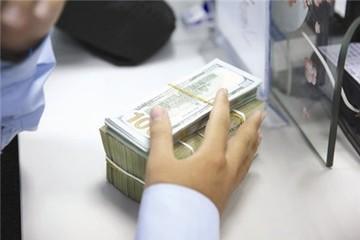 Khu vực FDI: Nghịch lý lợi nhuận nhiều, nộp thuế ít