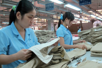 TCM ước doanh thu 5 tháng đạt 60 triệu USD, thực hiện 47% kế hoạch năm