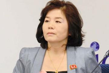 Triều Tiên lên án phó tổng thống Mỹ 'ngu ngốc', tái dọa hủy gặp thượng đỉnh