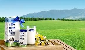 Chỉ mua được 130.000 cp VNM, F&N Dairy đăng ký mua tiếp 14,5 triệu cp