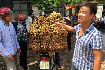 Tin đồn vải 10 ngàn/kg: Chỉ có quả sâu, quả còi hạng bét