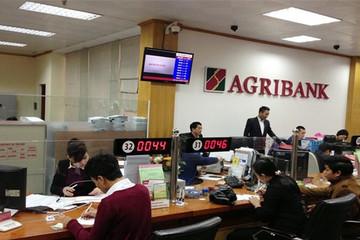 Nhân viên Agribank thu nhập bình quân 23,4 triệu, sếp quản lý gần 74 triệu đồng/tháng