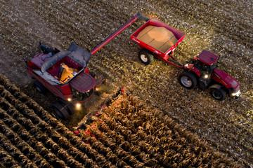 Giá nông sản thế giới đối mặt nguy cơ thấp nhất từ tháng 3