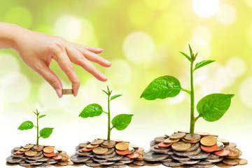 [Infographic] Toàn cảnh về đầu tư và thu hút vốn FDI trong 5 tháng đầu năm