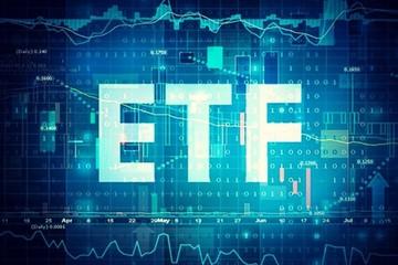 [Review ETF] V.N.M ETF loại HAG và HSG