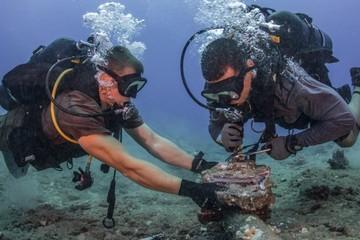 Những điều ít biết về cáp quang biển