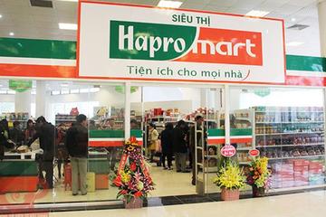 Một công ty BĐS đã mua gần 32 triệu cổ phiếu Hapro