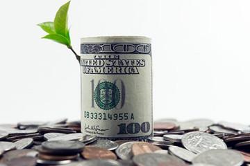 USD tăng giá, thị trường chứng khoán có bị ảnh hưởng?