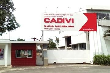 CADIVI bị phạt do bán chui cổ phiếu VTH