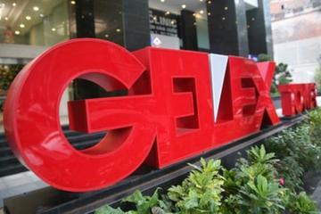 Nhóm Dragon trở thành cổ đông lớn của Gelex
