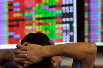 Quỹ đầu tư cũng lao đao vì đà giảm của thị trường