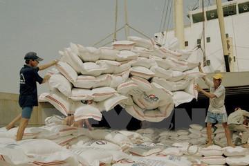 VPBank và IFC cấp gói tài trợ thương mại 50 triệu USD cho 'ông lớn' xuất khẩu gạo tư nhân