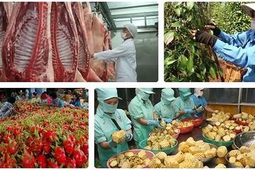 Nhiều nút thắt xuất khẩu nông sản Việt đang dần được tháo gỡ
