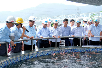 Thủ tướng làm việc với Formosa lần thứ 2 trong năm