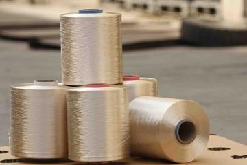 Việt Nam bị xác định bán phá giá sợi Nylon Filament Yarn tại Ấn Độ