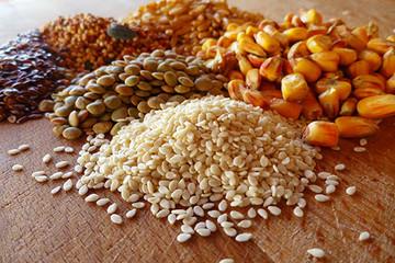 Xu hướng mới trong nhu cầu nguyên liệu thức ăn chăn nuôi