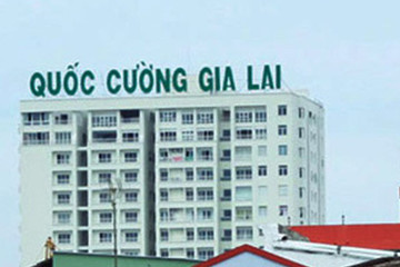 Gia đình bà Nguyễn Thị Như Loan cho QCG vay gần 770 tỷ, gấp 22 lần 2016