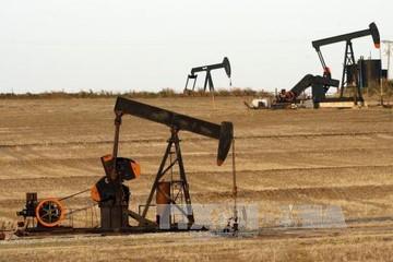 Ngành dầu khí Mỹ chịu áp lực từ biện pháp trả đũa thương mại của Trung Quốc