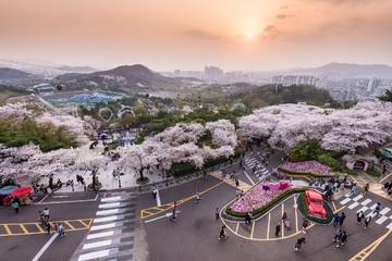 Vietjet tung 200.000 vé máy bay giá từ 0 đồng đi Nhật Bản, Hàn Quốc, Đài Loan