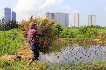 TP HCM tìm nhà đầu tư Khu đô thị Thanh Đa