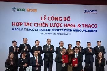 Thaco và HAGL thống nhất chiến lược phát triển dài hạn thế nào?