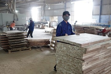 Nỗi lo thường trực của ngành chế biến gỗ