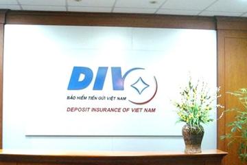 Bảo hiểm tiền gửi Việt Nam lãi 115 tỷ nửa đầu năm, tăng mua trái phiếu dài hạn