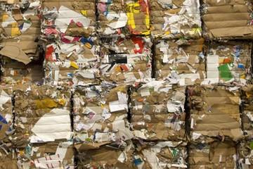 Những tỷ phú biến rác thành