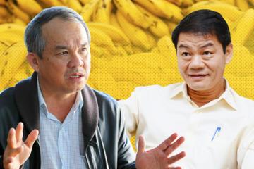 Đầu tư 1 tỷ USD vào HAGL, Thaco muốn gì?