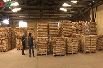 Doanh nghiệp kiến nghị kiểm soát chặt đồ gỗ xuất khẩu