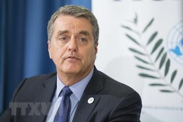 Tổng giám đốc WTO kêu gọi bảo vệ trật tự thương mại toàn cầu