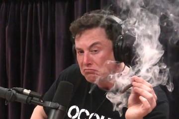 CEO hút cần, kế toán trưởng, trưởng phòng nhân sự từ chức, cổ phiếu Tesla giảm 10%