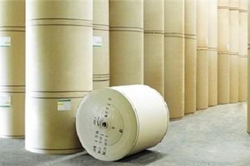 VPPA kiến nghị cần có cơ chế kiểm soát giấy nguyên liệu nhập khẩu phù hợp