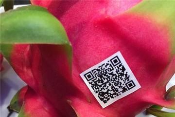 Lần đầu tiên truy lý lịch thanh long Việt Nam bằng blockchain
