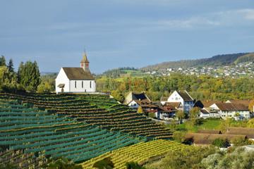 Dân làng Thụy Sỹ được chia gần 2.600 USD mỗi tháng