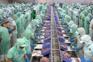 Cơ sở chế biến cá da trơn, tôm sẽ bị hạn chế tiêu hao năng lượng?