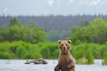 Mỹ là nước tốt nhất thế giới về du lịch sinh thái