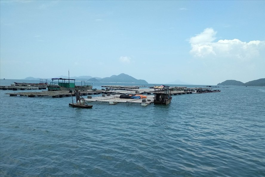 """Doanh nghiệp Trung Quốc xin cấp """"mỏ cát"""" trên vùng nuôi thủy sản"""