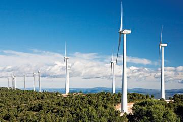 Thu hồi dự án nhà máy điện gió gần 3.000 tỷ đồng