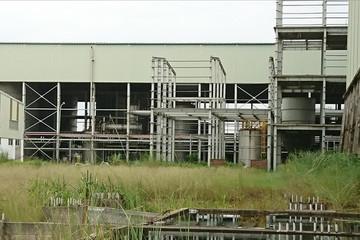 Mối lo độc quyền khi chỉ một doanh nghiệp sản xuất ethanol trong nước