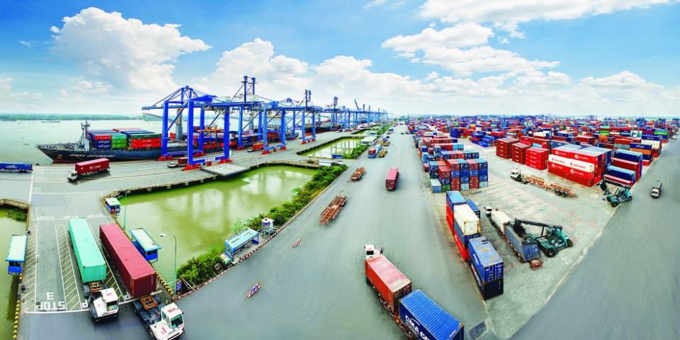 Geleximco đầu tư 'một nửa' dự án 110 triệu USD tại Bà Rịa - Vũng Tàu