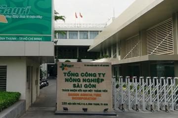 'Tổng công ty Nông nghiệp Sài Gòn sử dụng sai 1.900 ha đất công'