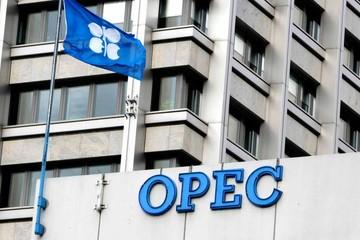 Giá dầu đạt đỉnh 4 năm, Mỹ lại đưa dự luật kiện OPEC ra xem xét
