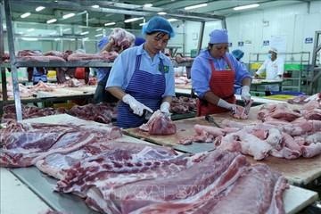 VASEP: Xuất khẩu thủy sản Việt Nam năm 2018 ước đạt 9 tỷ USD, tăng 7%