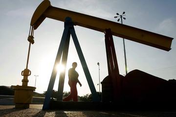 Dự trữ dầu tại Mỹ dự báo tăng, giá dầu rời đỉnh 4 năm