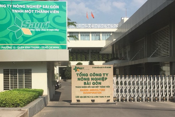 Giữa sai phạm 2.000ha đất công, TCT Nông nghiệp Sài Gòn kinh doanh ra sao?