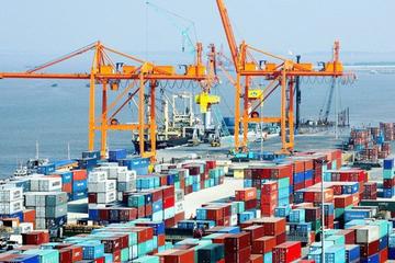 Yêu cầu làm rõ nghịch lý hệ thống cảng biển