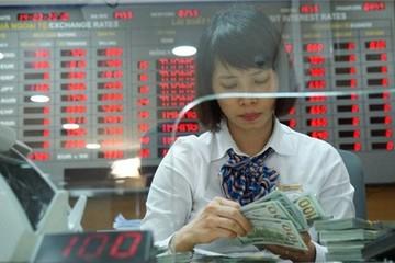 Chuyên gia nước ngoài dự báo tỉ giá USD/VNĐ của Việt Nam