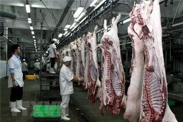 """Giá thịt lợn tăng sốc, doanh nghiệp chăn nuôi lãi khủng vẫn than """"không vui"""""""