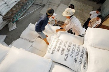 NHNN giao các ngân hàng kịp cân đối vốn cho vay xuất khẩu gạo